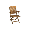 Denver Folding Arm Chair