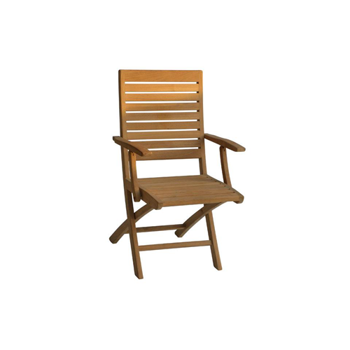 Trent Folding Arm Chair